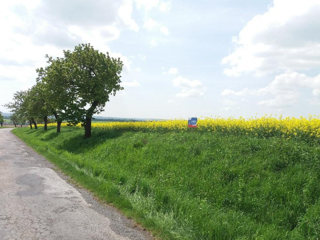 Prodej, Zemědělská půda, 6651m² – Hačky